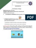 GUIA DIDACTICA SEXTO (4)