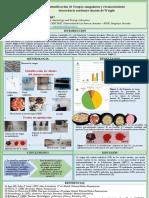Reporte-de-Laboratorio1_Arias_Paredes