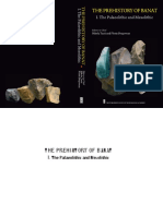 THE_PREHISTORY_OF_BANAT_I._The_Palaeolit