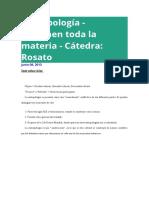 Resumen Boivin y Rosato