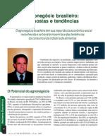 ambiente_economico1_Agronegocio_