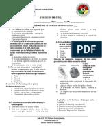 EVALUACION BIMESTRAL CRP (2)