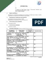 8 - Informe Final.docx