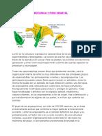 flor y fruto .pdf