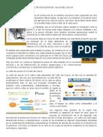 LA PRODUCCIÓN DE LA CAÑA DE AZÚCAR EN EL VALLE DEL CAUCA.docx