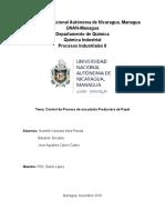 Examen Final Proceso de Control Industrial , PRODUCCION DEL PAPEL