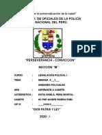 ESTRUCTURA ORGANICA DE LA PNP.docx