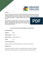 plan-anual-1.docx