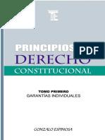 principios de derecho  constitucional.pdf