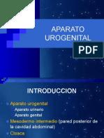 5 DESARROLLO APARATO UROGENITAL