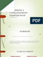 9. El ambiente y comportamiento organizacional (3)