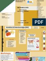 microbiología-proyecto.pptx