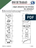 5 AÑOS CIENCIA Y AMBIENTE III