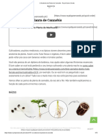 A Anatomia da Planta de Cannabis - Royal Queen Seeds