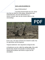 Deforestation and Its Effects