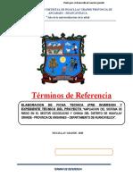 02 TDR elaboracion expediente riego huayllay.docx