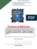 04 TDR DE ELABORADOR DE PMA  riego huayllay