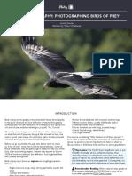 Bird+Photography_BirdsofPrey.pdf