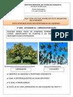 2 ANO - SEMANA 7 - ATIVIDADE 4 - CIÊNCIAS.pdf
