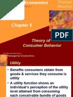 23735829 Theory of Consumer Behavior