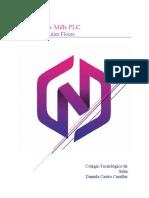 Proyecto Emprendimiento New Mills PLC (2)