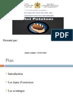 Hot Potatoes 11