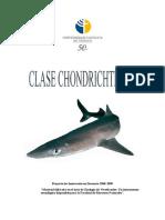 Guia Teórico-Práctico_Peces-Chondrichthyes