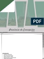 PROVINCIA DE CONCEPCIÓN- CUENCA (1).pdf