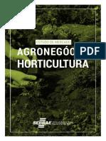 Horticultura na Bahia.pdf