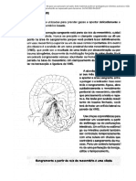 Ciurgia do trauma - Top Knife em portugues 81 a 90.pdf