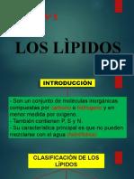 T4 LOS LIPIDOS
