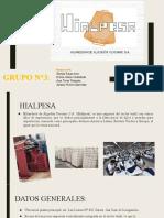 GRUPO 3- HIALPESA (1)
