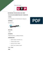 INFORME 2 -  ROTOPLAS FINAL - (1).docx