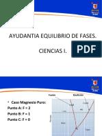 366847942-Ayudantia-Equilibrio-de-Fases.ppt