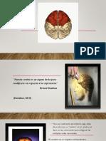 clase3funcionesejecutivas-160905024735.pdf