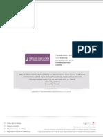 21315106007.pdf