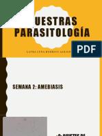 Muestras parasitologia.pptx