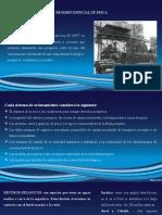 REGIMEN-ESPECIAL-DE-PESCA.pptx