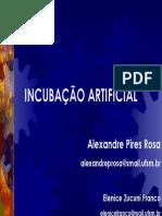 02_Incubação universidade federal.pdf