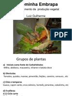 Sisteminha-Programacao plantio