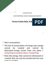 Chapter 6enterprise Risk Management