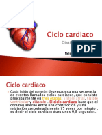 ciclocardiacoanatomia-111020023914-phpapp01.pdf