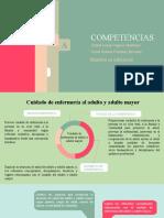 PROCESO CURRICLAR - Competencias- Lucia y Oscar