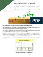 doc_3_plantation_sciences_découvrir_le_monde.pdf