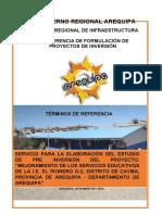 TDR I.E G-2 PIONERO DE CAYMA  (1)