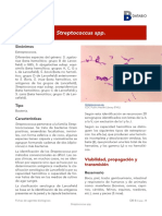 Streptococcus spp - Año 2019.pdf