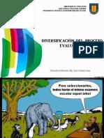 Diversificación de la Evaluación_CCV