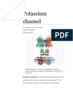 Potassium channels in Arabidopsis