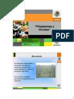 T24Fitoplasmasviroides (1).pdf