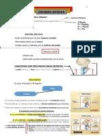 Miembro Inferior PDF